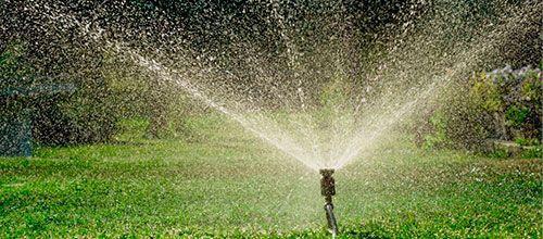 empresas de servicios de jardineria en madrid